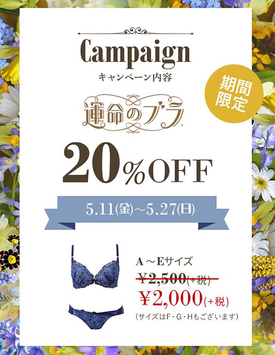 【運命のブラ】160万枚突破キャンペーン!