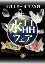 水晶フェア 開催中!